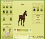 equideow cheval