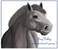Ponyvalley